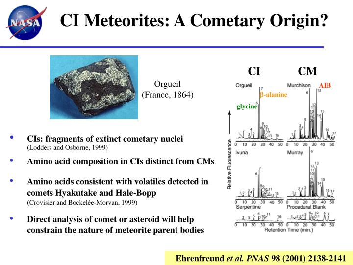 CI Meteorites: A Cometary Origin?