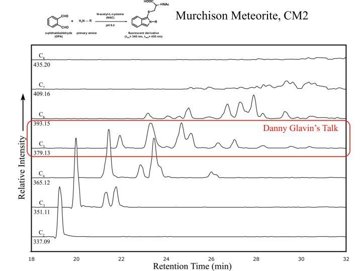 Murchison Meteorite, CM2