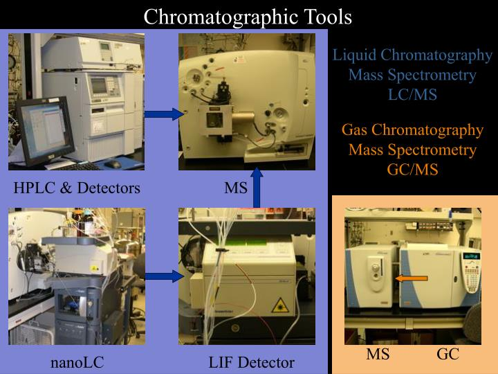 Chromatographic Tools