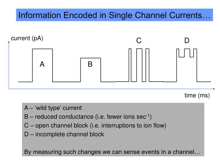 Information Encoded in Single Channel Currents…
