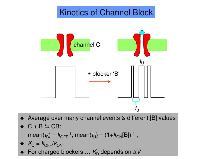 Kinetics of Channel Block