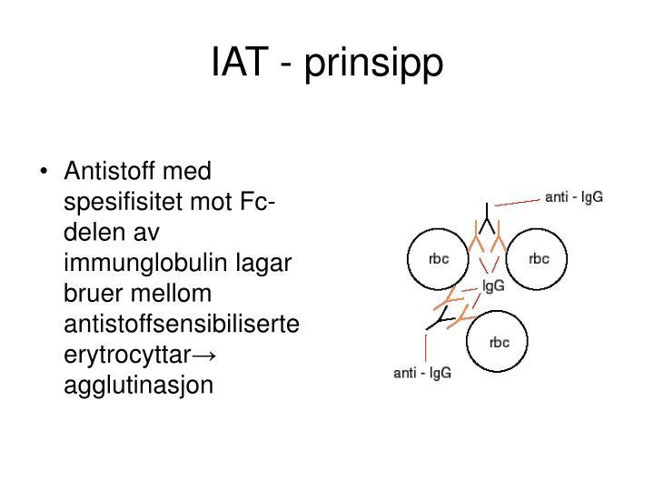 IAT - prinsipp