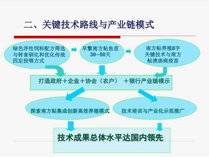 二、关键技术路线与产业链模式