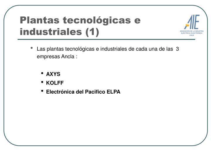 Plantas tecnológicas e industriales (1)