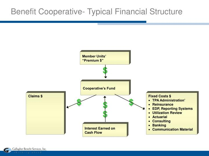 Benefit Cooperative- Typical Financial Structure