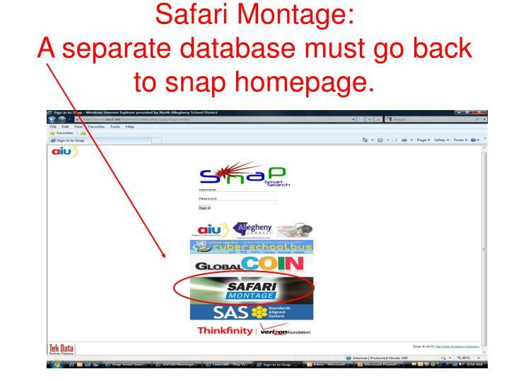Safari Montage: