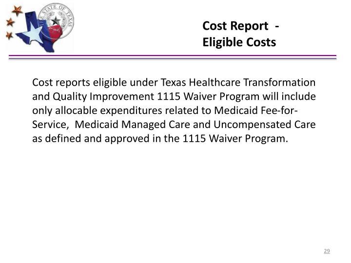 Cost Report  -
