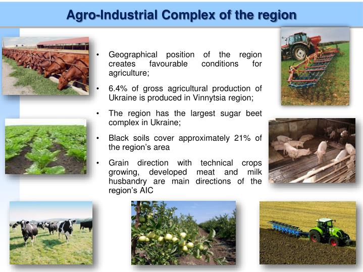 Agro-Industrial Complex of the region
