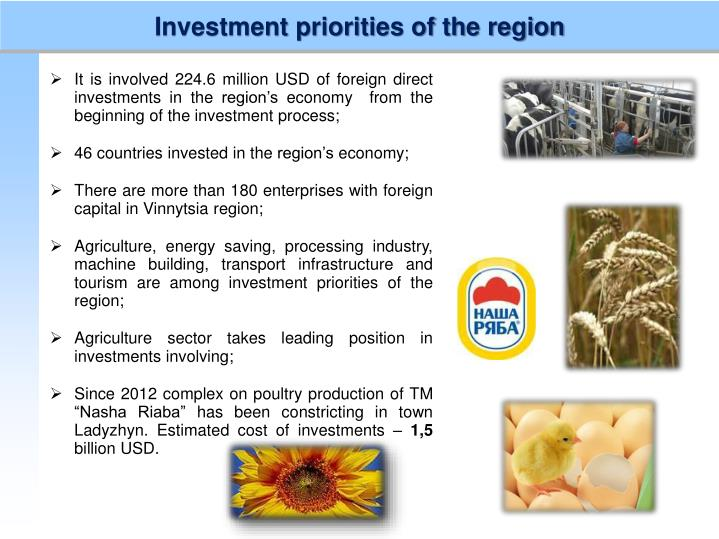 Investment priorities of the region