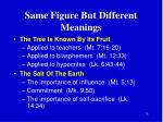 same figure but different meanings5