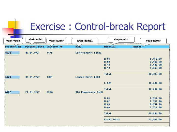 Exercise : Control-break Report