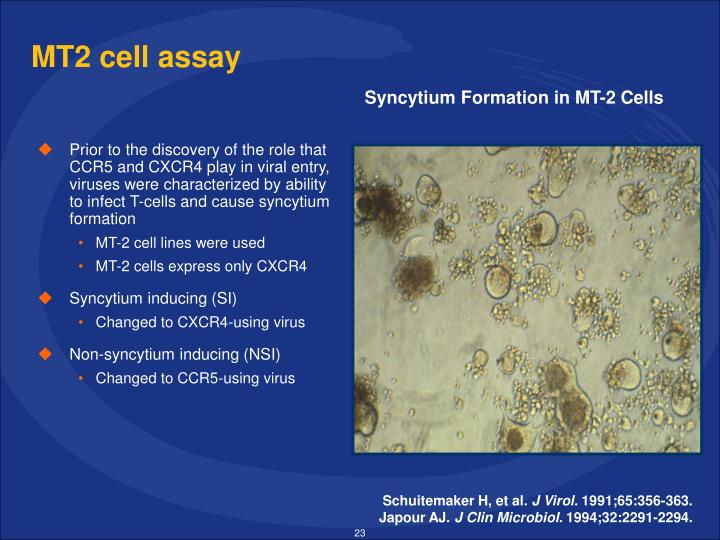 MT2 cell assay