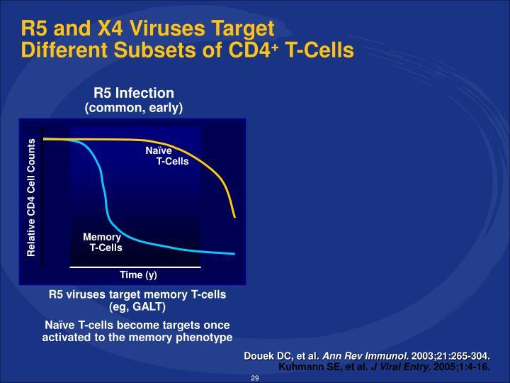R5 and X4 Viruses Target