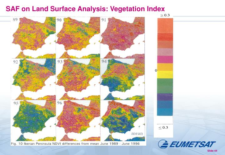 SAF on Land Surface Analysis: Vegetation Index