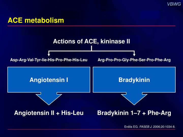 ACE metabolism