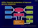 aceis potential mechanisms of improved glucose metabolism