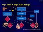 ang ii effect in target organ damage