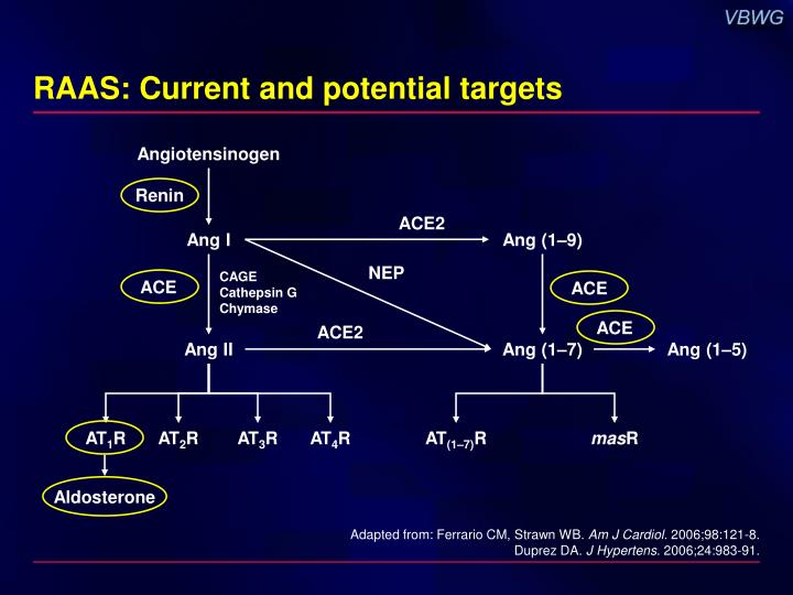 RAAS: Current and potential targets