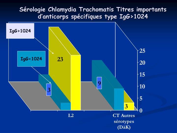 Sérologie Chlamydia Trachomatis Titres importants d'anticorps spécifiques type IgG>1024