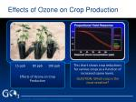 effects of ozone on crop production