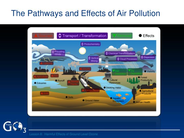 The pathways and effects of air pollution