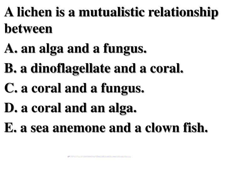 A lichen is a