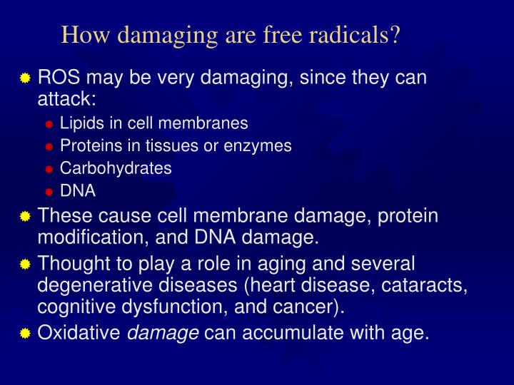 How damaging are free radicals?