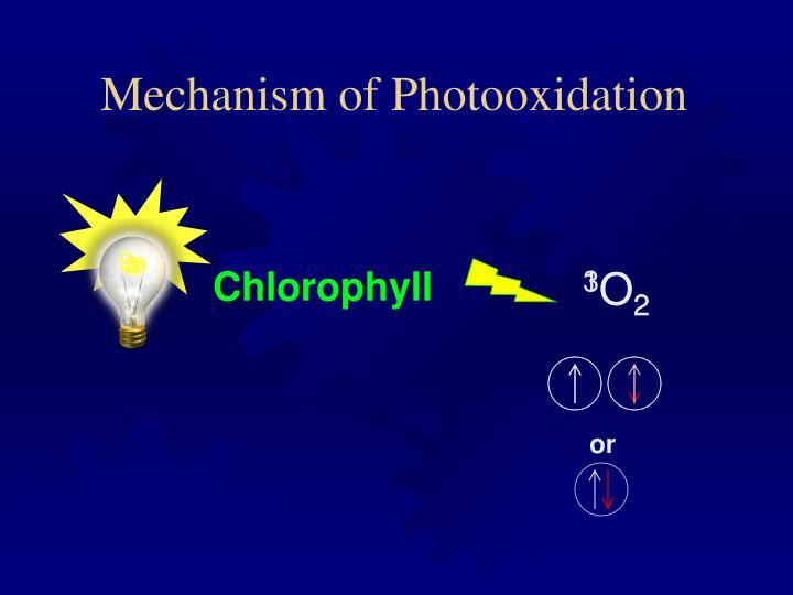 Mechanism of Photooxidation
