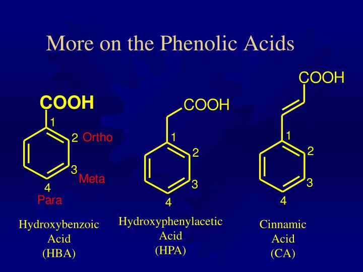 More on the Phenolic Acids