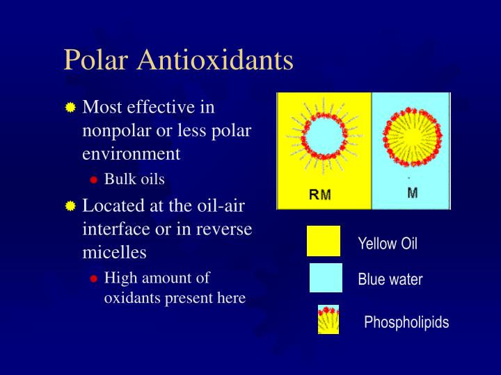 Polar Antioxidants