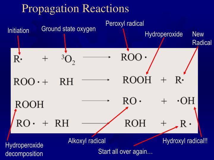 Propagation Reactions