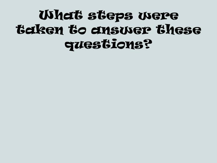 What steps were taken to answer these questions?