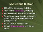 mysterious c krait