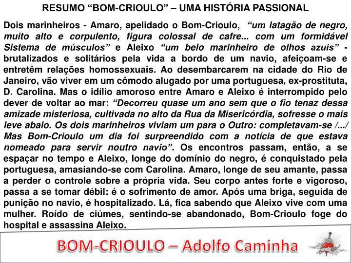 """RESUMO """"BOM-CRIOULO"""" – UMA HISTÓRIA PASSIONAL"""