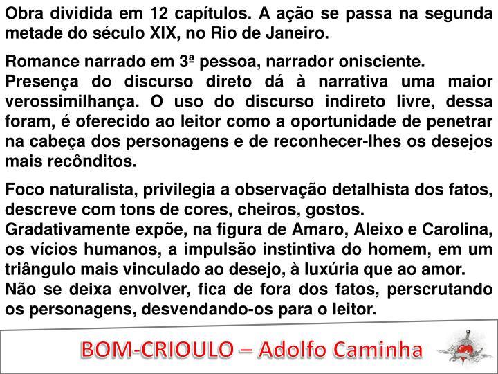 Obra dividida em 12 capítulos. A ação se passa na segunda metade do século XIX, no Rio de Janeiro.