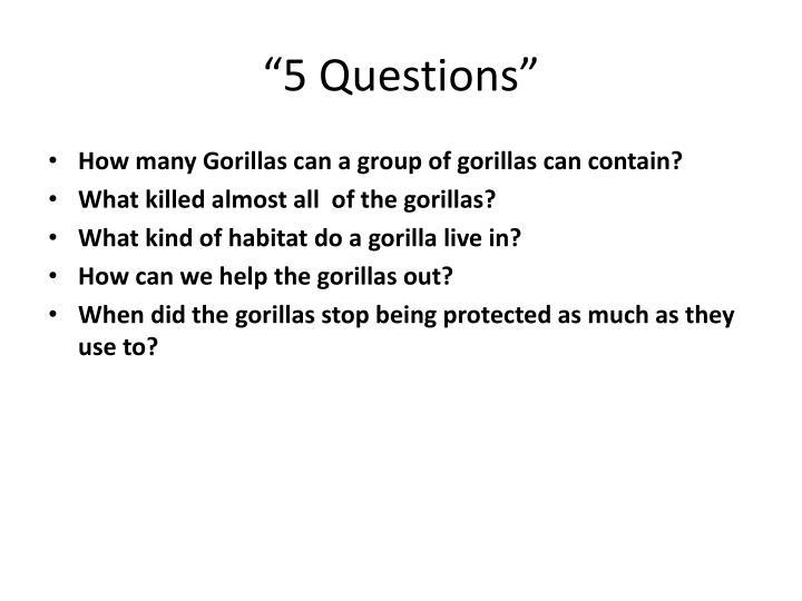 """5 Questions"""