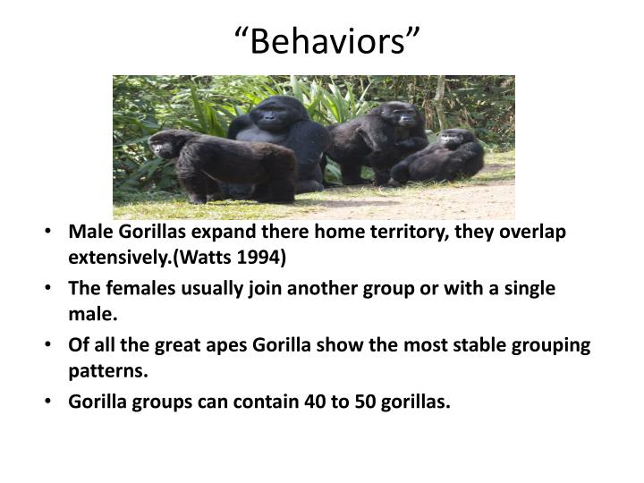 """Behaviors"""