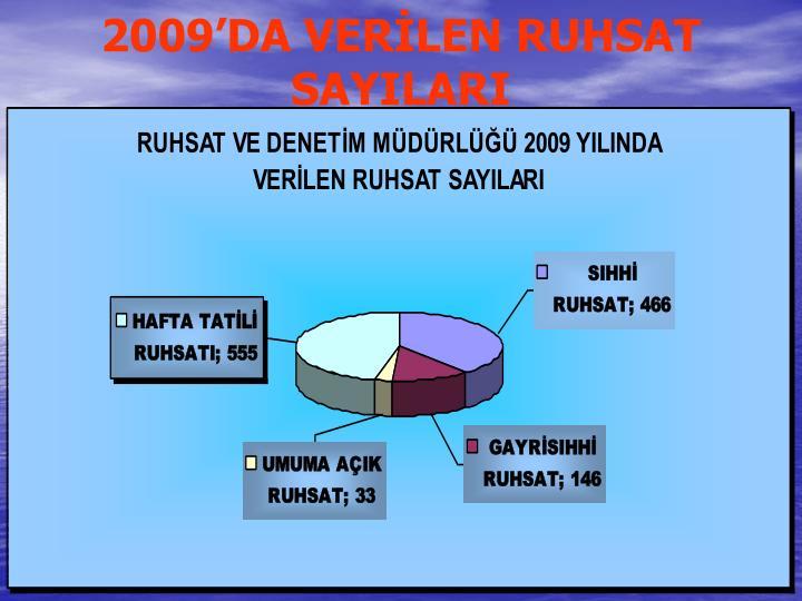 2009'DA VERİLEN RUHSAT SAYILARI