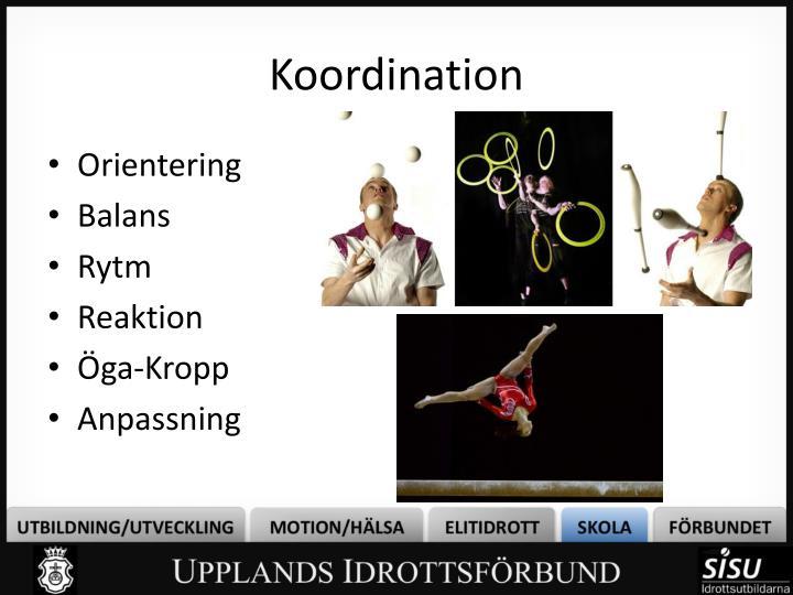 Koordination