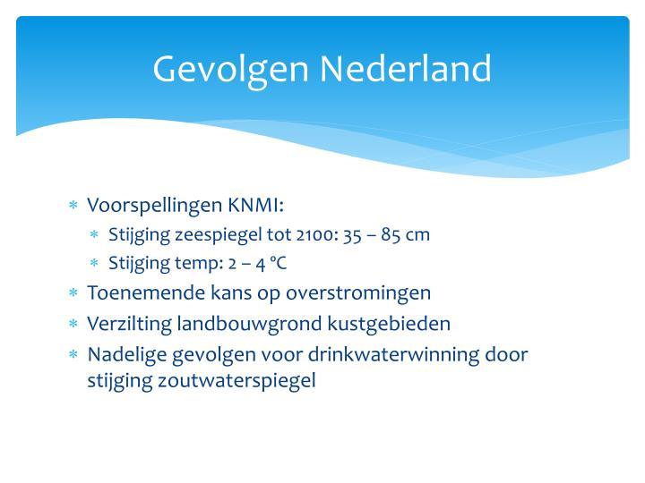 Gevolgen Nederland
