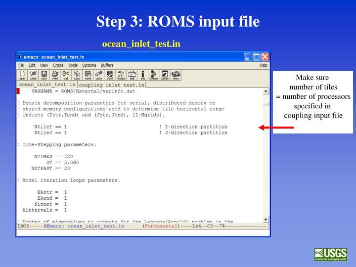 Step 3: ROMS input file