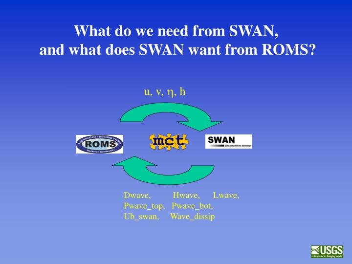 What do we need from SWAN,