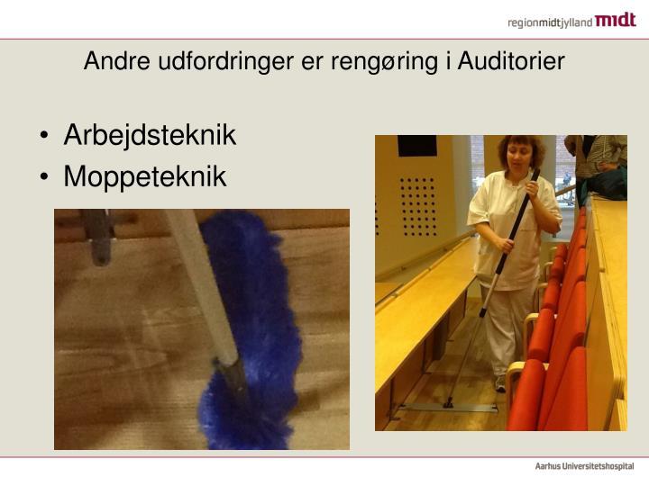 Andre udfordringer er rengøring i Auditorier