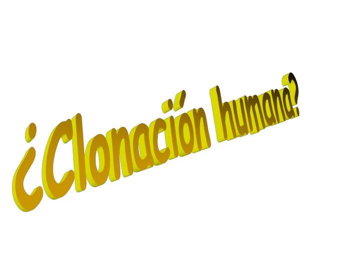 ¿Clonación humana?