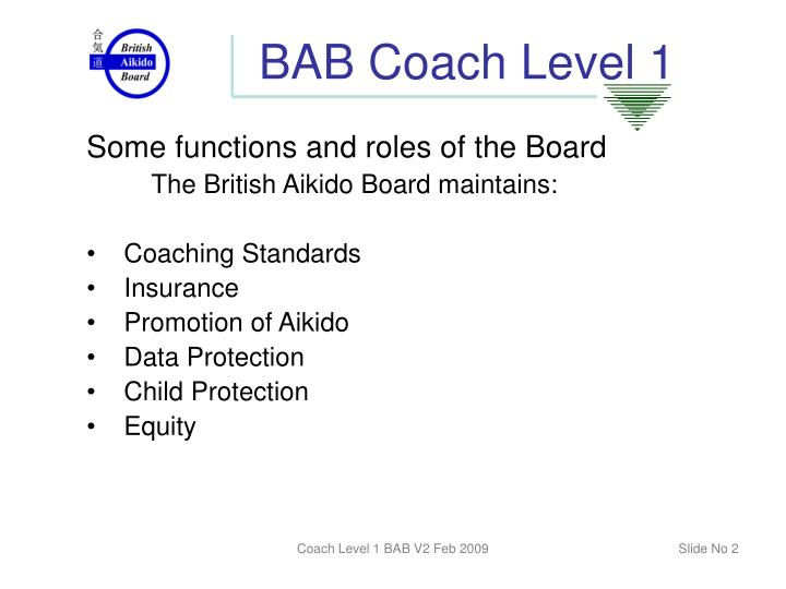 Bab coach level 11