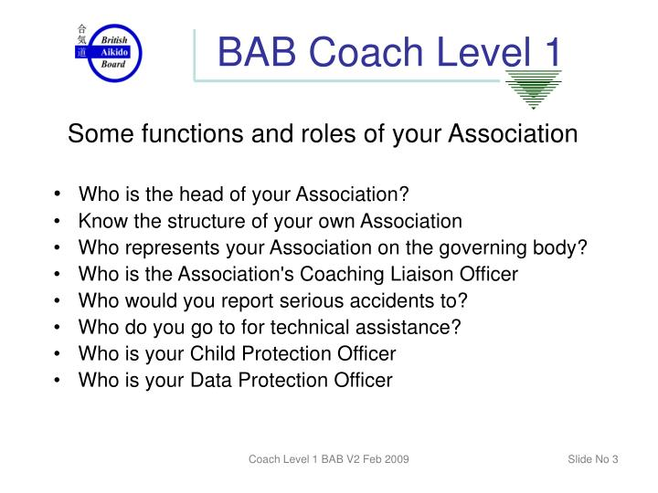 Bab coach level 12
