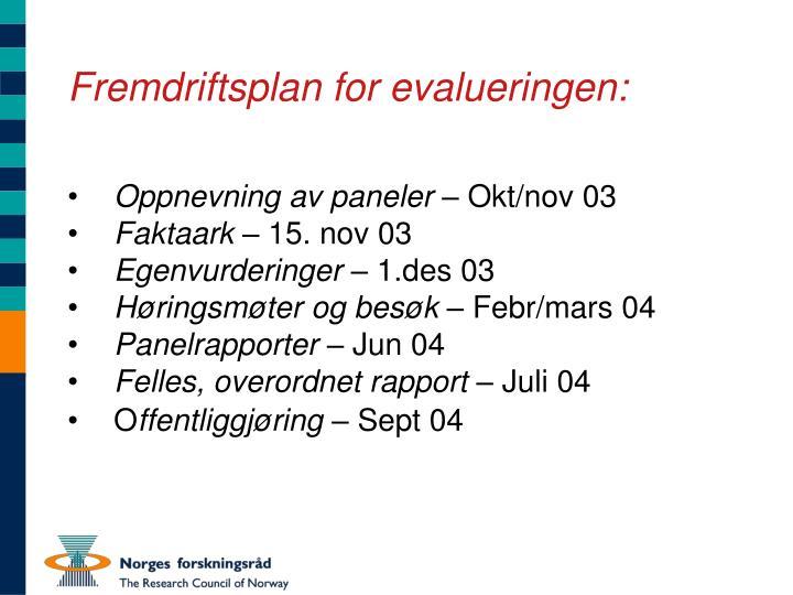 Fremdriftsplan for evalueringen: