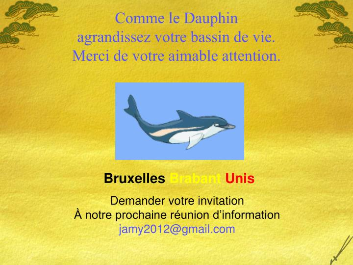 Comme le Dauphin