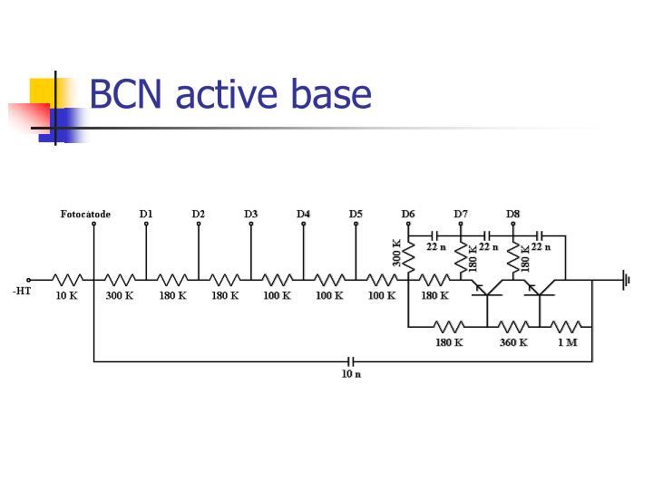 BCN active base