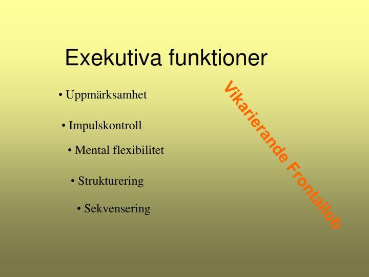 Exekutiva funktioner